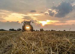 Getreideernte-0200